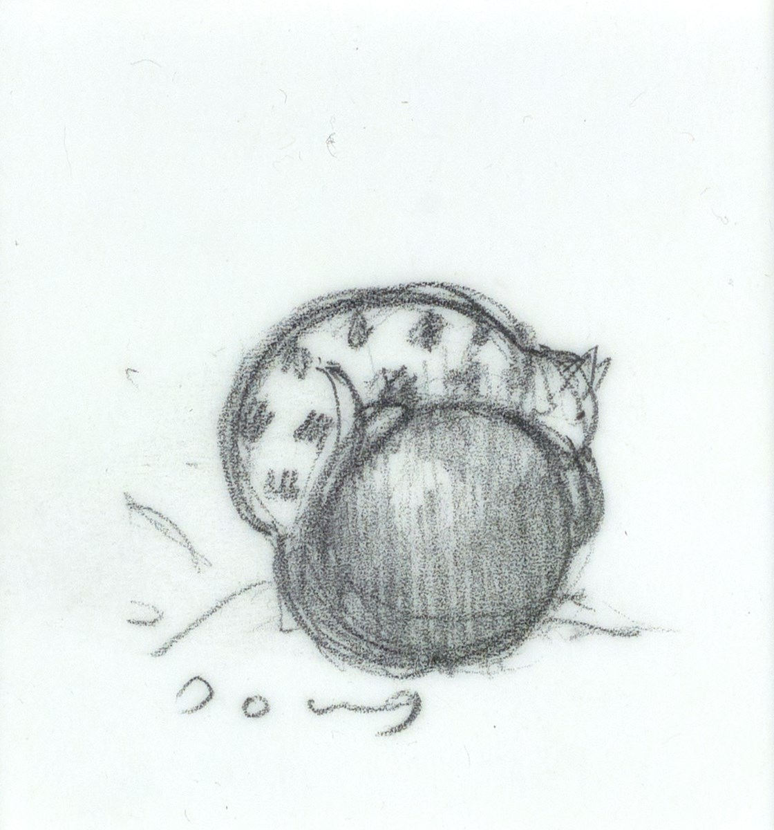 Chester's Favourite Ball (study)